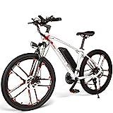 Carsparadisezone Elektrofahrrad MTB 26 Zoll E-Bike mit 48V 8Ah Lithium-Akku, Hochfestem...