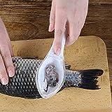 QYWJ Fischschuppenentferner, Fischschuppersägezahn, Schnelle Reinigung Fisch Pinsel mit klarer...