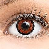 Dunkelbraune Farbige Kontaktlinsen Pretty Hazel Dunkelbraun Sehr Stark Deckende SILIKON COMFORT...