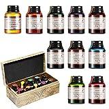 GCQUILL Kalligraphie Tuschen Set 10 Farben in 21 ml Flaschen, untereinander mischbar, Bunte Inks...