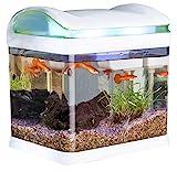 Sweetypet Aquarium: Transport-Fischbecken mit Filter, LED-Beleuchtung und USB, 3,3 Liter (Mini...