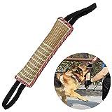 Beisswurst für Hunde Hundeseile mit Zwei Schlaufen Kauspielzeug für Hunde Hundespielzeug Sehr...