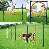 MelkTemn HundenHindernis-Agility-Ausrüstung Set, verstellbar, Agility-Trainingsgerät für Hunde...