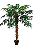 Seidenblumen Roß Phönixpalme 140cm ZJ künstliche Pflanzen Palmen Palme Kunstpalmen Kunstpflanzen...