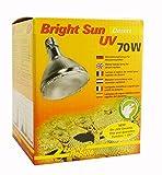 Lucky Reptile BSD-70 Bright Sun UV Desert, 70 W, Metalldampflampe fr E27 Fassung mit UVA und UVB...