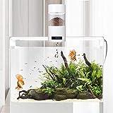 longrep Automatisierte Futterspender Für Fische Bequem Abnehmbar Aquarium Futterautomat Doppelte...