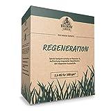 Regenerations-Rasen Bloom & Green I Rasensamen fr die Rasen-Regeneration I Gras-Samen fr die...