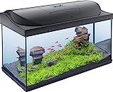 Tetra Regular Starter Line Aquarium-Komplettset mit LED-Beleuchtung stabiles 105 Liter...