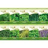 Kräutersortiment | Kräuter-Set mit 10 Sorten Samen | Kräutersamen-Sortiment | Küchenkräuter und...