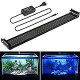 MAINLICHT Aquarium LED Beleuchtung, Aquariumbeleuchtung Lampe Weiß Blau Licht 18W mit Verstellbarer...