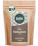 Flohsamen 1kg, ganz (1000g, Bio) I Premium Qualität mit 99% Reinheit I Wiederverschließbarer...