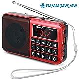 PRUNUS L-238SW Portables Radio UKW FM/AM(MW)/SW/MP3/USB/SD/TF Groe gummierte Knpfe  groes Display...