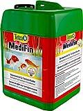 Tetra Pond MediFin (universell wirkendes Arzneimittel für alle Gartenteichfische, hilft effektiv...