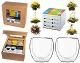 TEEBLUMEN-GESCHENKSET / 2x 410ml DUOS Jumbo Doppelwandgläser + 6er Box Teeblumen grüner Tee in...