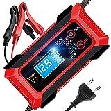 RIKIN Ladegerät Autobatterie 8A 12V/24V Batterieladegerät Vollautomatisches Intelligentes...
