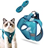 Katzenleine mit Geschirr für Katzen,Hundegeschirr,katzengeschirr mit leine,cat harness and...