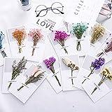 USUNO 12 Packungen Premium-Grußkarten für alle Anlässe mit getrockneter Blume –...