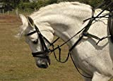 Rhinegold 0 5-Point Breastplate-Pony-Havana Vorderzeug