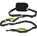 Joggingleine fr kleine Hunde bis 15 kg | Elastische Reflektierende Hundeleine von 110 bis 160 cm...