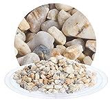 25 kg Filterkies beige, Filtermedium für Sandfilteranlagen von Schicker Mineral für Pool, Teich,...