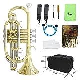 Festnight Bb Flach Kornett, Messing Professionell Instrument mit Tragetasche Handschuhe Putzlappen...