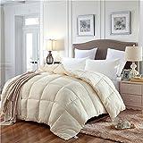 YSYW Daunenalternative Bettdeckeneinlage, mittelschwer, für alle Jahreszeiten, flauschig, warm,...