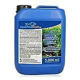 AquariumDirekt Wasseraufbereiter für das Aquarium (GRATIS Lieferung in DE - Perfekt bei Voll- oder...