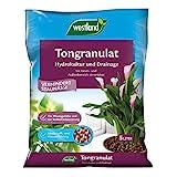 Westland Ton-Granulat für alle Topfpflanzen, Grün- und Blühpflanzen, Ton-Farbe, 5 Liter