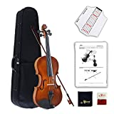 Aileen Violine 4/4 Vintage Anfänger Set