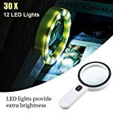 Turbobm 30X Lupe mit 12 LED-Licht, Handlupe, doppelte Linse Verbesserte Lupenlampe Lupe für...