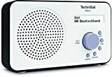 TechniSat VIOLA 2 tragbares DAB Radio (DAB+, UKW, Lautsprecher, Kopfhreranschluss, zweizeiligem...