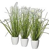 Klocke Dekorationsbedarf Kunstpflanze - Gras im Topf - 3 Stck - Hhe: 36cm - Farbe: Grn/Creme -...