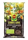COMPO SANA Zitruspflanzenerde mit 8 Wochen Dnger fr alle Zitruspflanzen und mediterranen Pflanzen,...
