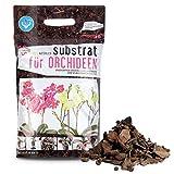 Green-PIK LAT Substrat für Orchideen – Ökologische Wurmkompost Fertigmischung I Wichtige...