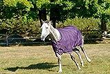 Shires Pferdedecke Tempest Plus 200, violett / weiß