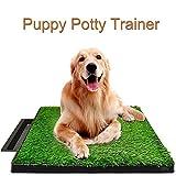 Allright Welpentoilette Hundetoilette Hunde Training Rasenmatte für Kleine Hunde WC Toilette neu 63...