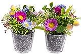 Flora-Seta GmbH knstliches Blumen-Arrangement im Glas (2 Stck) (lila-pink, Frhlingsblumen)