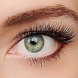 ELFENWALD farbige Kontaktlinsen, 3 - Monatslinsen, INTENSE BERNSTEIN, stark deckend, natrlicher...