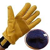HDFG Vollleder Frostschutz/Warm/Niedrigtemperatur-Handschuhe, dick/Plus Samt/Mechanische...