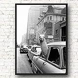 Kamel auf Leinwand von New York Taxi Wandkunst Nordic Poster und Tierdruck rahmenloses Gemlde...