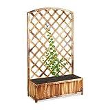 Relaxdays Rankkasten, mit Rankgitter, Holz, Balkon, Garten, Rosen, Wein, Efeu, Rankhilfe, HxBxT...