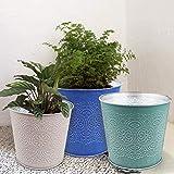 Blumentöpfe für Pflanzen – Set mit 6 Stück für Innen- und Außenbereich, verzinktes Metall,...