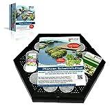 bell vital® Isla Planta Pflanzinsel (1er Set) für einen sauberen Teich, rein biologisch, modular...