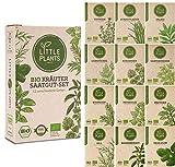 Nachhaltiges BIO-Kräuter Saatgut-Set von Little Plants | 12 samenfeste Sorten | In Graspapier...