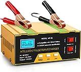 Aibeau Ladegerät Autobatterie 10A 12V/24V KFZ Batterieladegerät Vollautomatisches Intelligentes...