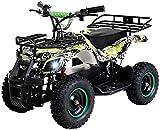 Actionbikes Motors Kinder Elektro Miniquad ATV Torino 800 Watt 36 Volt - Scheibenbremsen - Safety...