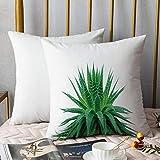 Kissenbezüge Kissenbezug Polyester,Pflanze, Aloe Vera mit leuchtenden Farben Indigene Arten...