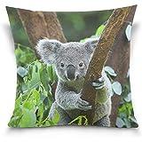 K.e.n Home Decor Kissenbezug mit Reißverschluss Niedliche Koala-Kissenbezüge 45x45cm 2 Stück