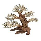 M Bonsai Baum Nr.10480 Wurzel Holz Aquarium Deko Aquascaping Bonsaibaum Dekoration Landschaft Moos