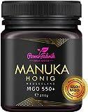 Manuka Honig | MGO 550+ | 250g | Das ORIGINAL aus NEUSEELAND | HOCHAKTIV, PUR, ROH & ZERTIFIZIERT |...